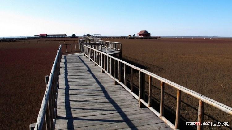 红海滩风景区电话_辽宁盘锦·红海滩景区游览